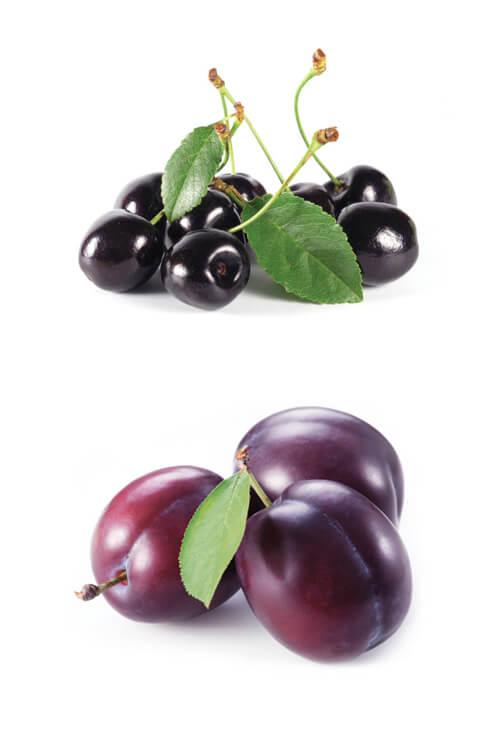 bramaluce-maremma-toscana-rosso-doc-terenzi-frutta1