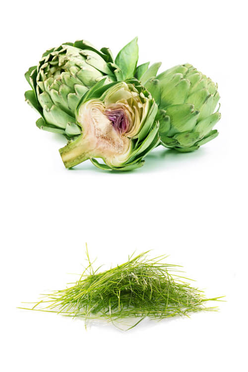 olio-extravergine-maremma-toscana-madrechiesa-terenzi-frutta1