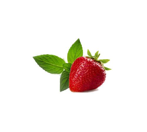 purosangue-morellino-scansano-riserva-frutta2