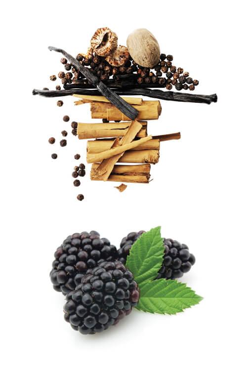 francesca-romana-maremma-tuscany-red-wine-doc-terenzi-bicchiere