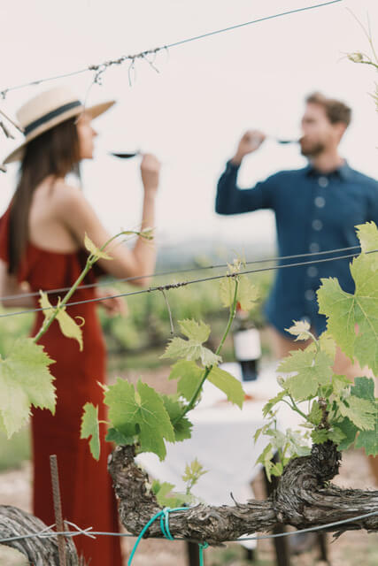 wine-resort-tuscany